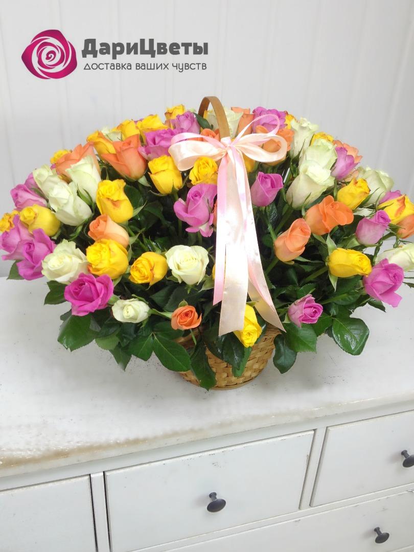 Комнатные цветы и растения каталогом